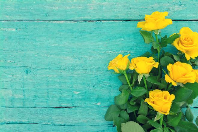 bouquet-yellow-roses-turquoise-rustic-wooden-background-v-valentine-s-day-mother-s-day-holiday-mock-up-top-77856466